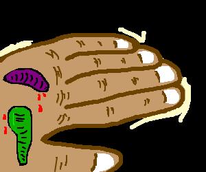 colourful leeches suck hand