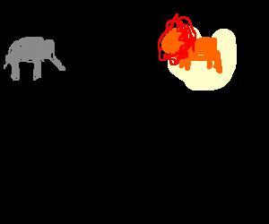 Eliphant's and lion's backs having a rap battle