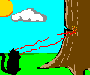 Cat lasers a tree down
