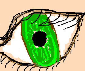 Extreme close up of a green eye.
