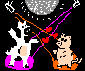a pig wants to dance with a cow