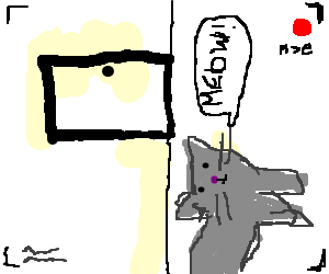 Cat knocks over movie camera