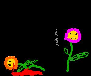 homicidal but melancholy flower