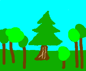 pine tree among really crappily drawn trees