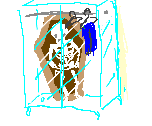 Skeleton in a coffin in your transparent closet.
