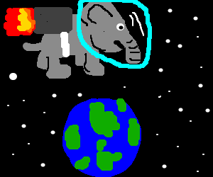 Elephant emissaire from space flying over earth.