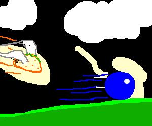 hedgehog outruns flying taco