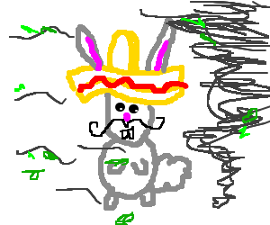 Mexican rabbit wear sombrero in a wind storm