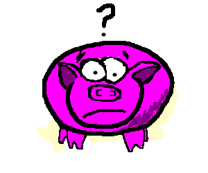 a pig is confused