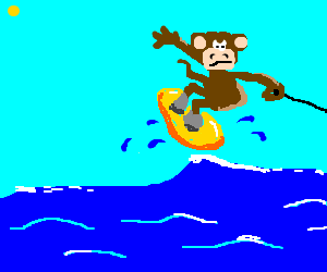 monkey wakeboarding