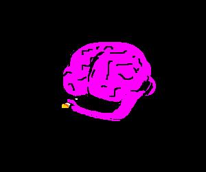 A brain needs a smoke
