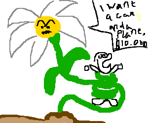 flower holds an old man as hostage