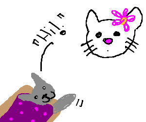 NyanCat says Hi to Hello Kitty