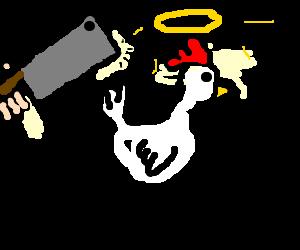 innocent chicken seconds before being slaughterd