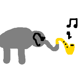 Elephant makes funky music