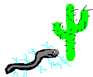 Electric eel in the middle of nowhere w/a cactus