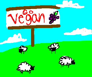 sheep graze by vegan sign