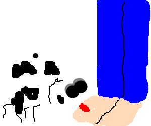 Sub-servient cow-spider licks the foot of master