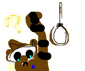 Raccoon contemplates suicide