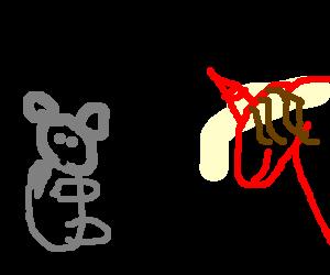 koala vs red unicorn