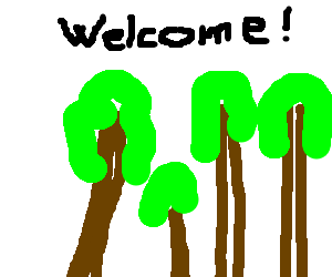 The woods welcome you