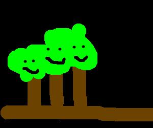 A family of trees enjoying September