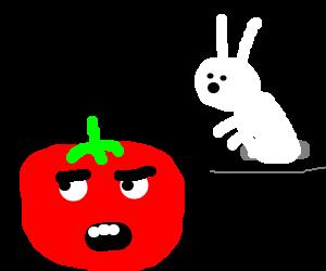 Tomato is unimpressed with magic.