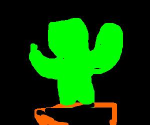 Diapason Cactus