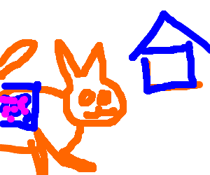 Orange Cat new Nayn cat Dreams of returning home