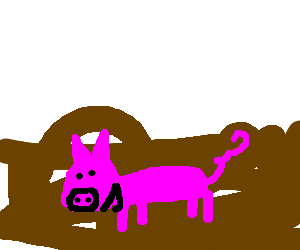 A happy pig in mud