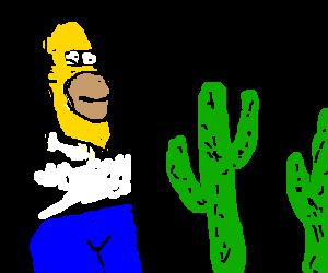 homer ambling through desert cacti