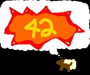 Dog thinks of 42