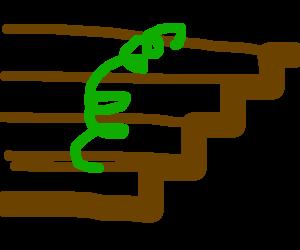 A green slinky
