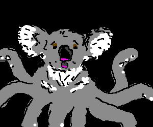Octokoala is stunned