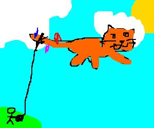 cat-kite enjoys a nice day