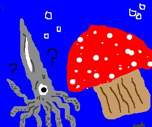 Squid confused by giant mushroom