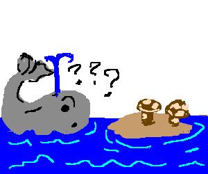 confused whale looking at mushroom island