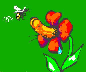 pervert plant