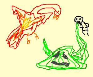 phoenix vs. green nasua