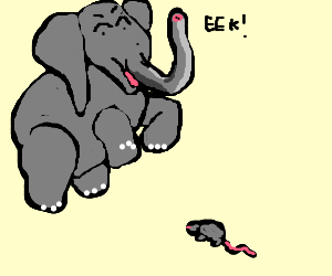 Elephant is afraid of mouse