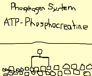 atp-pc