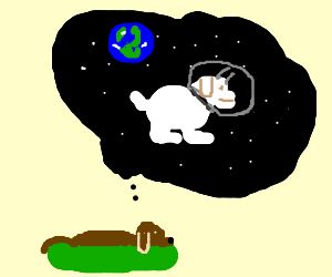 Dog dreaming of white dog in space