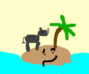 rhino found little island, not sure..its happy?