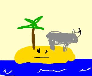 Rhino stranded on a bemused desert island.