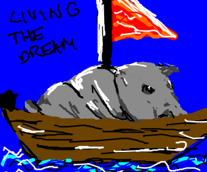 Hippo sails in a small boat on the open sea.