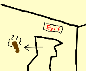 Poo from non conventional exit.