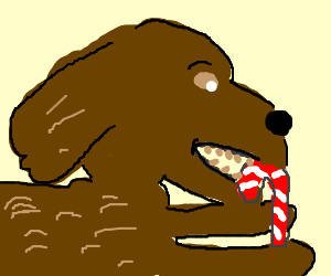 Dog is eating a candy cane.