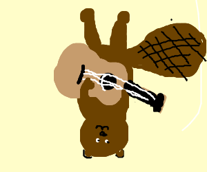 upside down beaver playing acoustic guitar