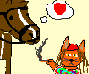 Horse falls in love with hippie cat