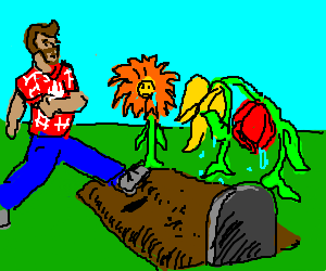 Bearded Canadian unconcerned with flower funeral